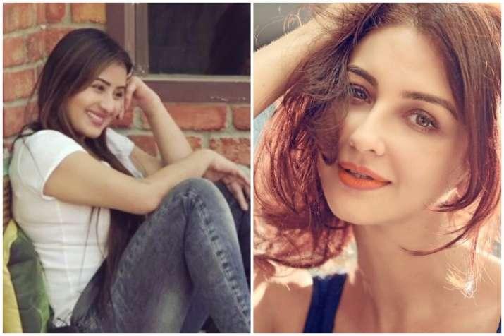 Shilpa Shinde, Saumya Tandon, Bigg Boss 11