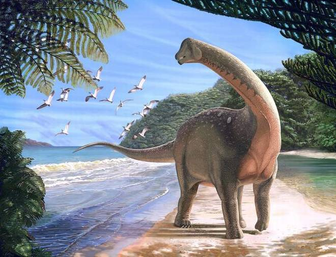 Titanosaurs are famous for including the largest land