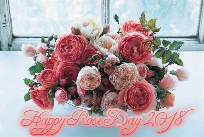 India Tv - Happy Rose Day 2018: WhatsApp, Facebook status, best wishes, SMS, quotes, greetings, HD images and GIFs