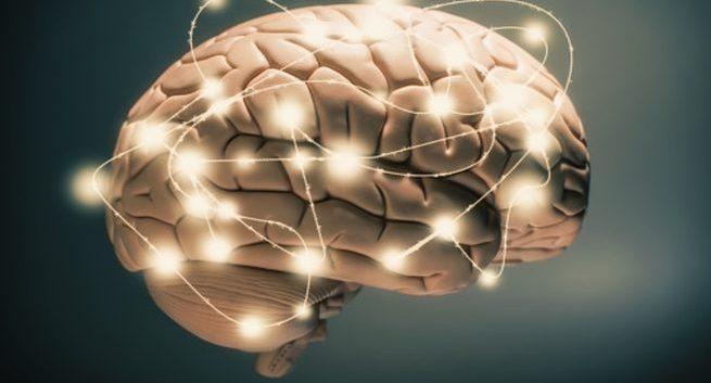 Researchers identify brain region for opioid alternative