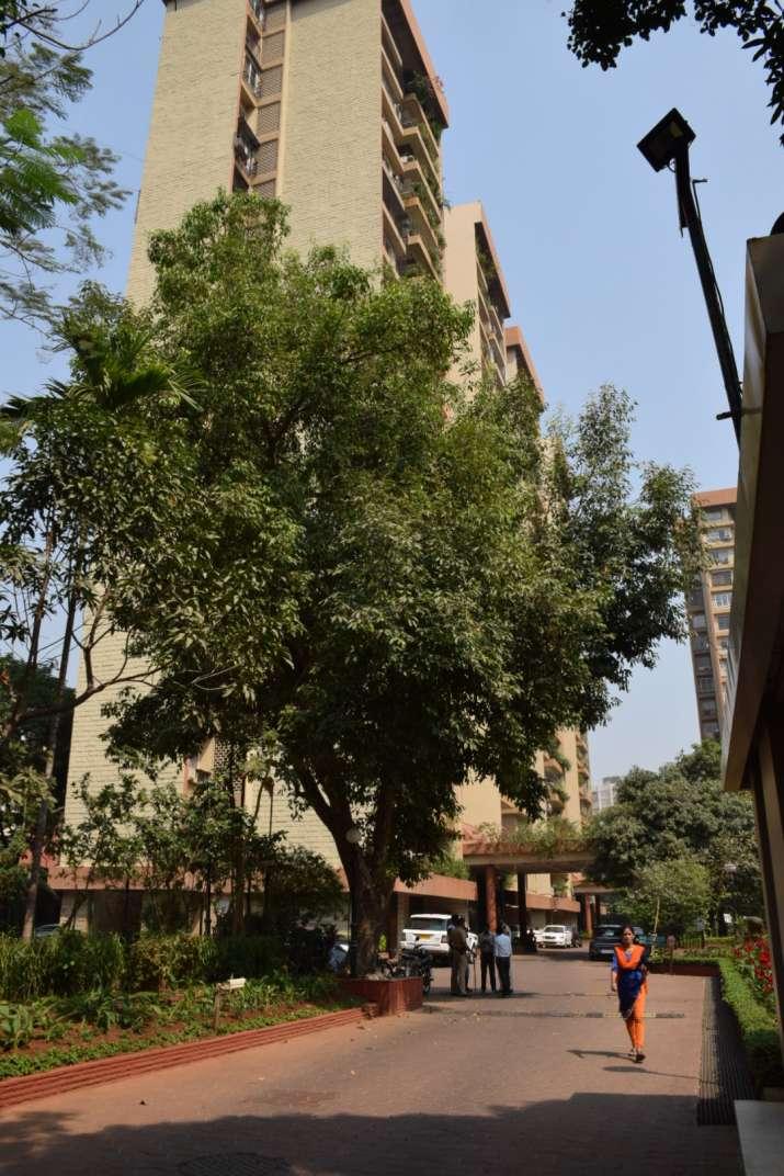 India Tv - Sridevi dies