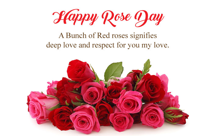Happy Rose Day 2018 Images Greetings Gifs Quotes Status For