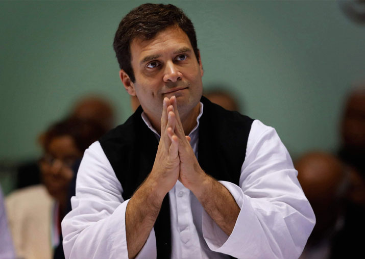 Rahul Gandhi forms 34-member steering committee for