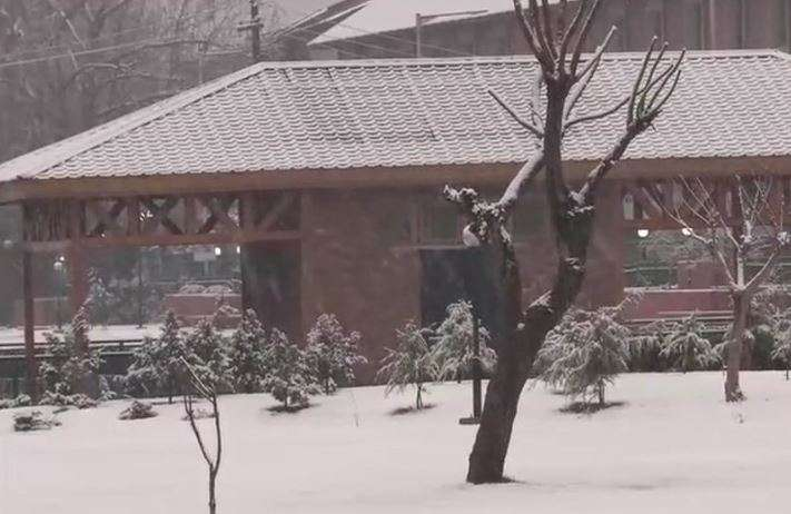 Snowfall shuts Jammu-Srinagar highway, temperature dips in