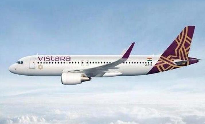 62-year-old Vistara passenger arrested for molesting crew