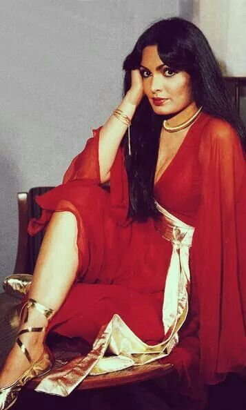India Tv - Parveen Babi birthday