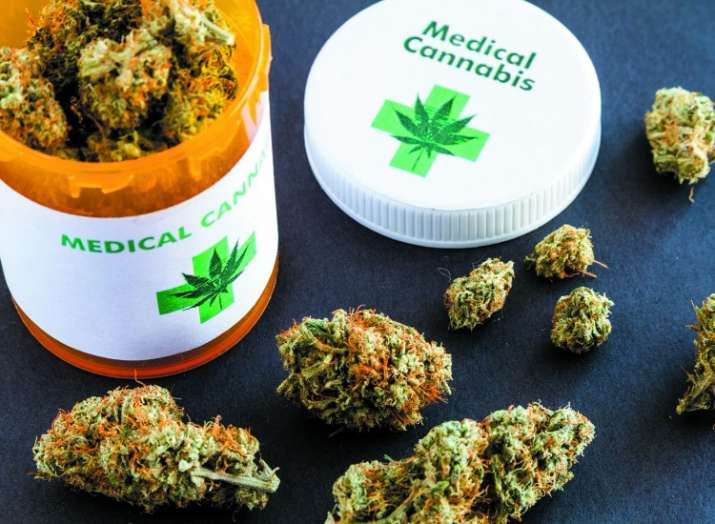 India Tv - Patients, Doctors turning to pot over pills, treatment with medical marijuana