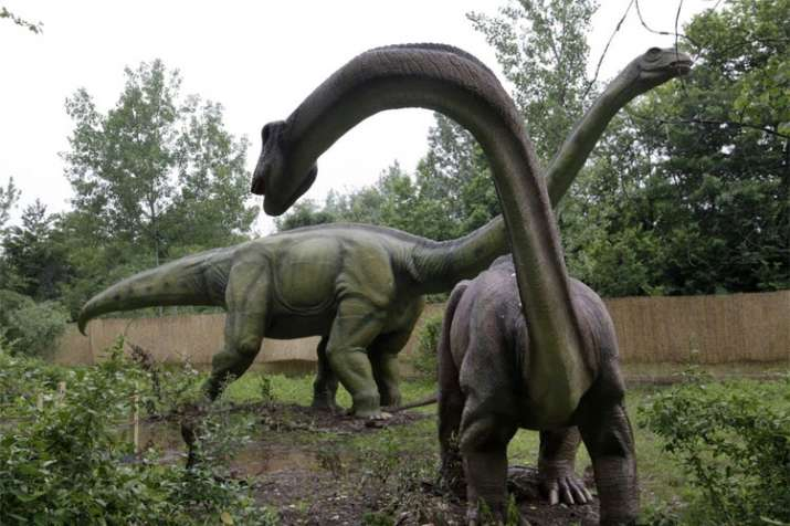 Dinosaurs enjoyed perfume fragrances, study says