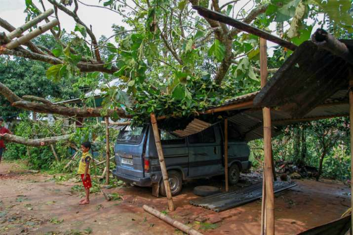 India Tv - A boy stand under the fallen trees after a cyclonic hit Kamalghat village of West Tripura district on Monday.