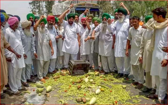 Farmers throw vegetables on a road during a state-wide