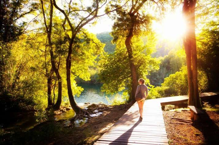 Health-boosting properties of forest bathing can be