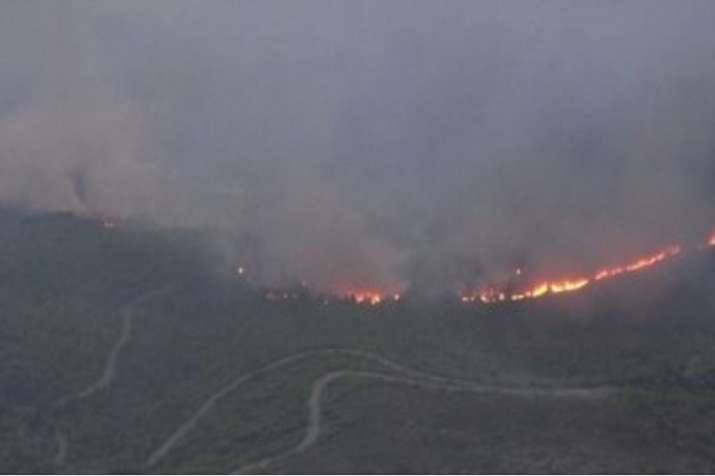 Fanned by strong winds, the fast-moving wildfire