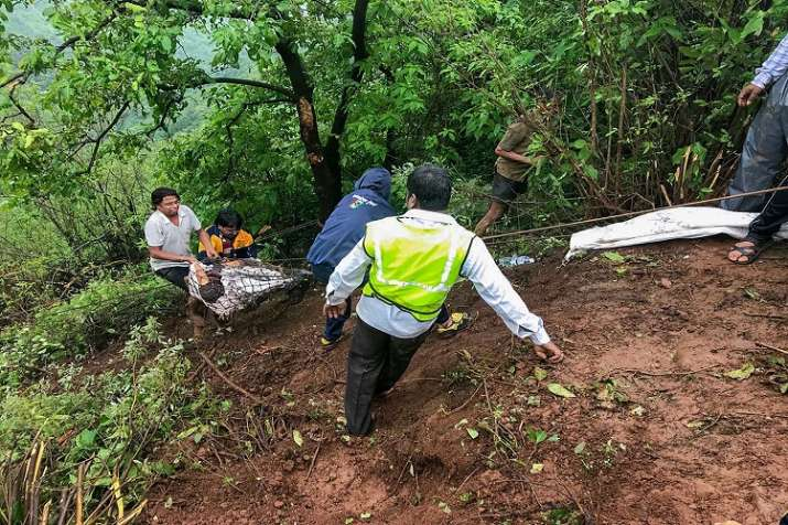 India Tv -  Mahabaleshwar Trackers members take out bodies at the accident site where a bus carrying a group of staff members of an agriculture university, fell into a 500-ft gorge in the Konkan region, killing 33 passengers
