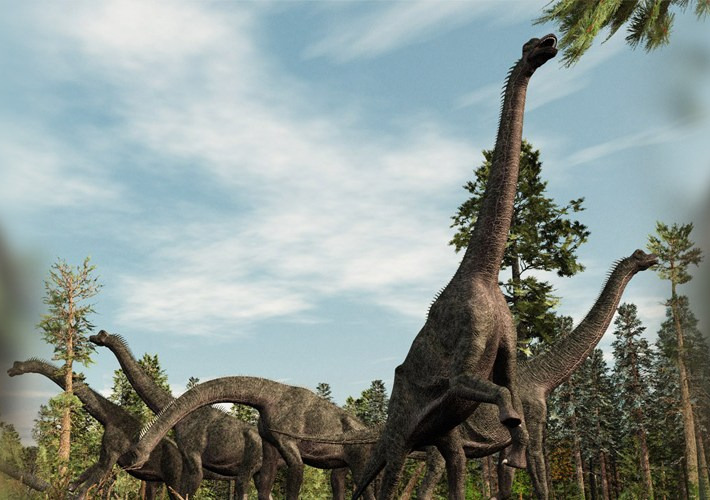 Dinosaurs loved perfumes way before you did, here's the fact