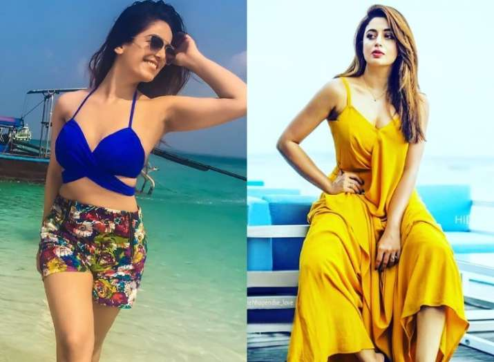 616f60408de9 Bigg Boss 12  Check out contestants  latest Pictures and what were ...