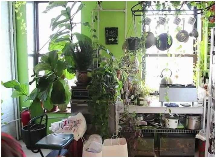 Home Decor Tips 4 Easy Ways To Create Indoor Vertical