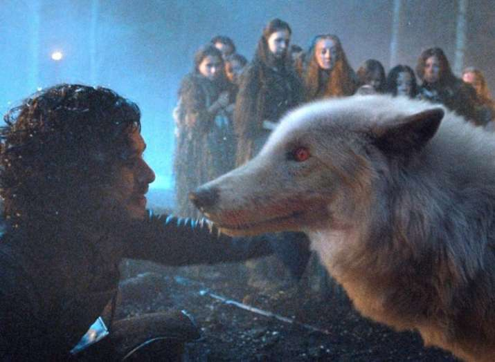 Game of Thrones to bring back Jon Snow's direwolf Ghost in Season 8