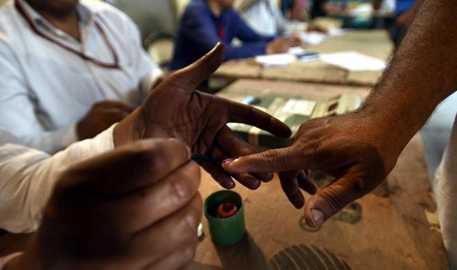 Indelible ink mark applied on voter's finger