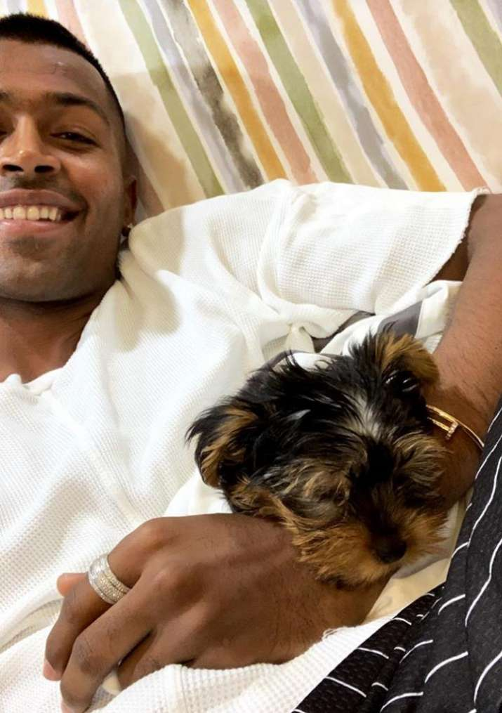 India Tv - Hardik Pandya took to Instagram to introduce his new family member
