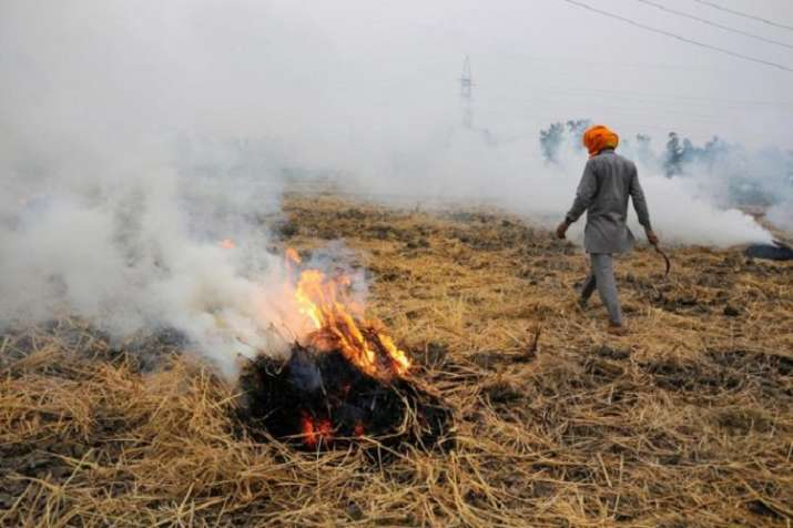 India Tv -  Stubble burning in neighbouring states of Delhi on Thursday was the
