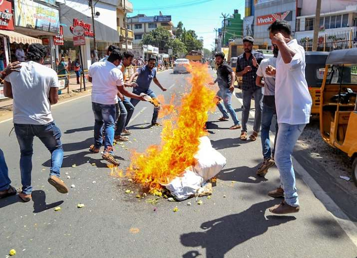 BJP workers burn an effigy of Kerala Chief Minister