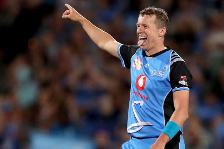 Big Bash star Peter Siddle eyes place in Australia T20 squad