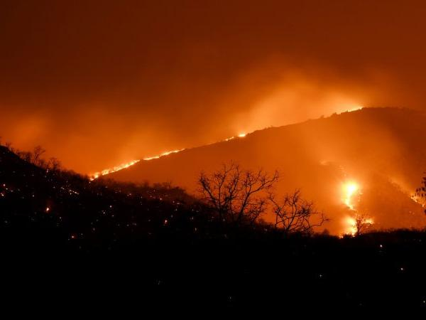 Karnataka intensifies efforts to battle raging wildfire in