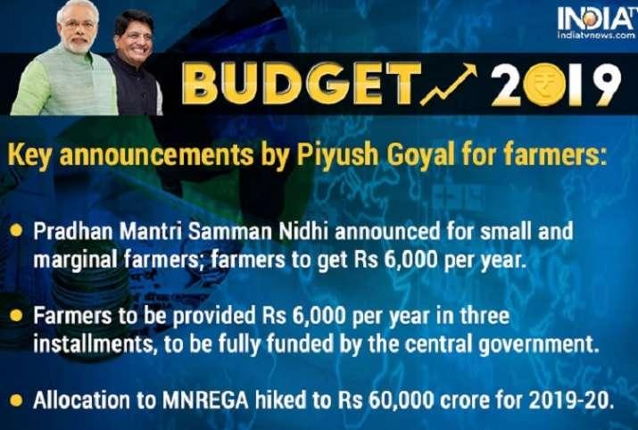 India Tv - Interim Budget 2019 Pradhan Mantri Samman Nidhi