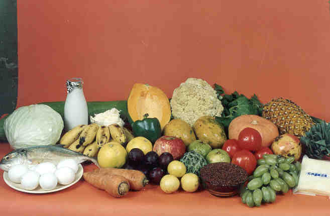 India's nutrition programme excludes poorest households: