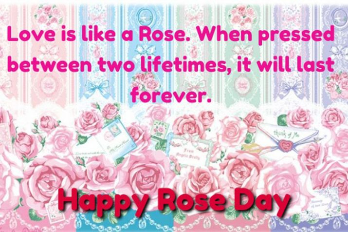 India Tv - Happy Rose Day 2019: Images, greetings, GIFs, quotes, wallpaper, status for your WhatsApp, Facebook