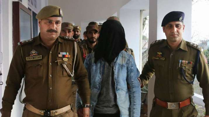 Jammu grenade thrower was paid Rs 50,000 by Hizbul