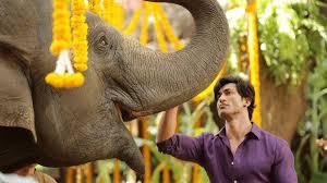 After Commando series, Vidyut Jammwal planning 'Junglee'