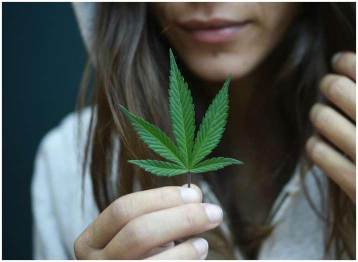 Smoking marijuana may increase the craving for junk food, finds study
