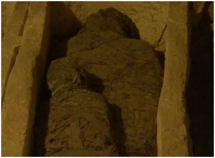 Archaeologists found 34 mummies in hidden Egyptian tomb; Know more