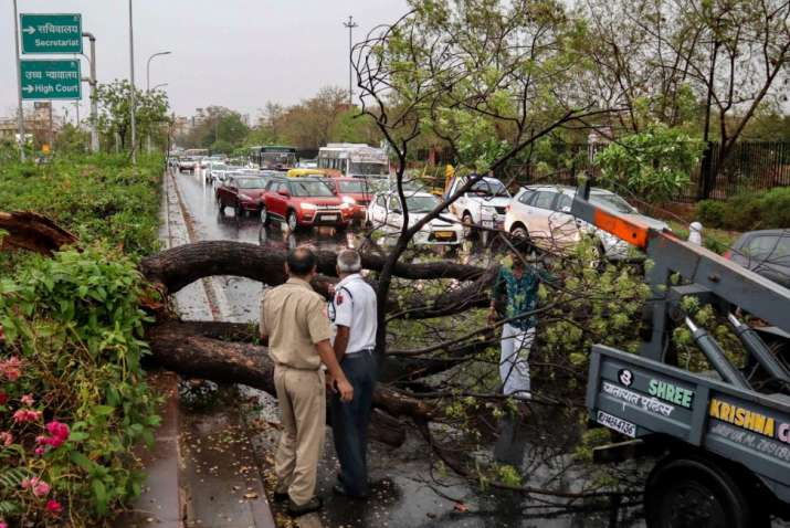 India Tv - Thunderstorm Alert Latest News: Police personnel look on as people remove a fallen tree obstructing traffic, after a thunderstorm, in Jaipur