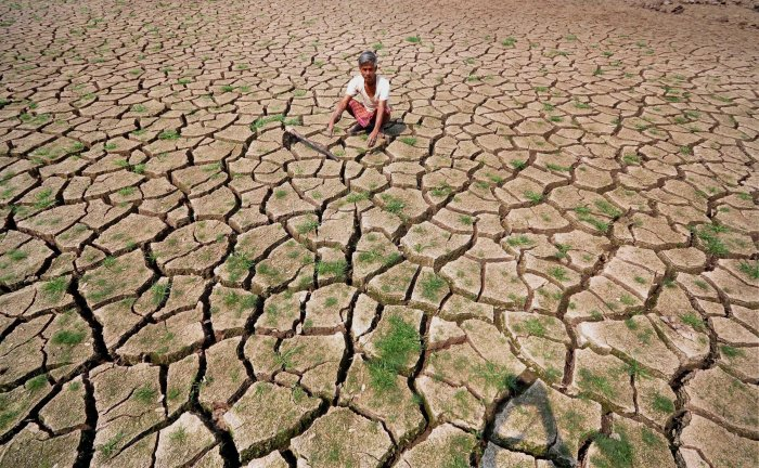 About 20.40 lakh hectare farm land have been affected due