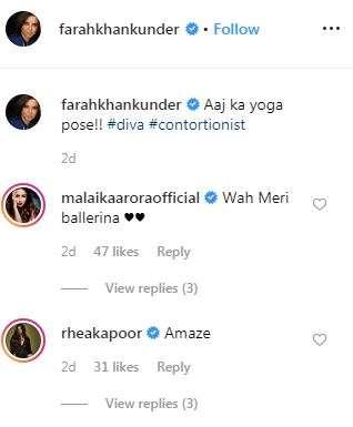 India Tv - Malaika Arora's comment