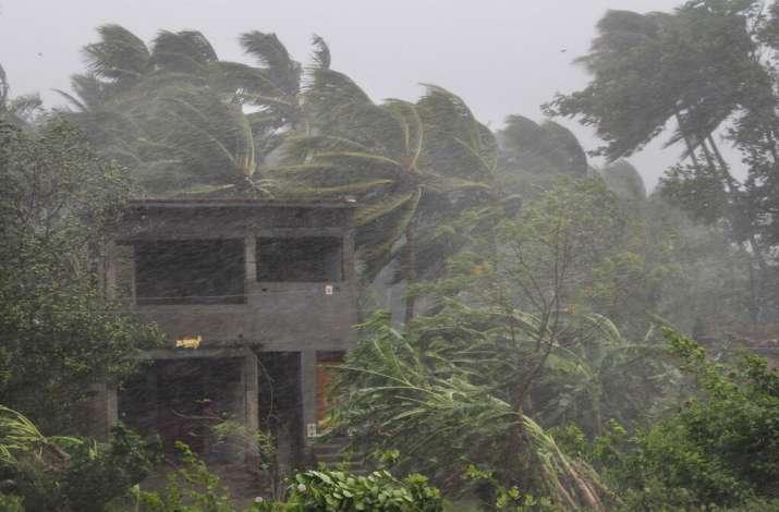 Cyclone Fani impact