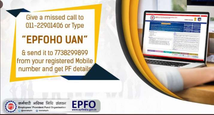 PF balance: Simple steps to check it anytime | Fyi News – India TV