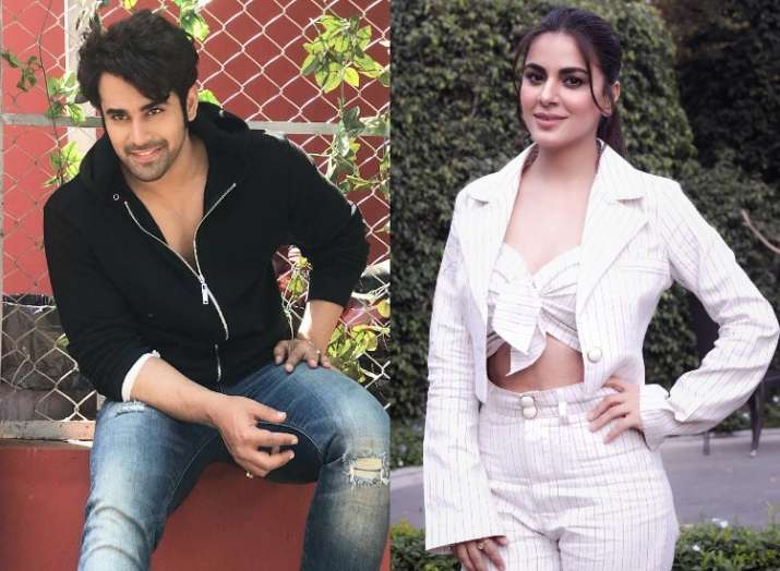 Kundali Bhagya actress Shraddha Arya and Naagin 3 fame Pearl Puri to be part of Salman Khan's Nach B