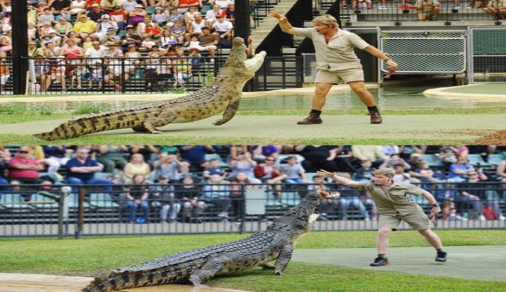 Steve Irwin S Son Robert Recreates Iconic Crocodile Feeding Picture At Same Zoo Leaving Twitterati Emotional Trending News India Tv