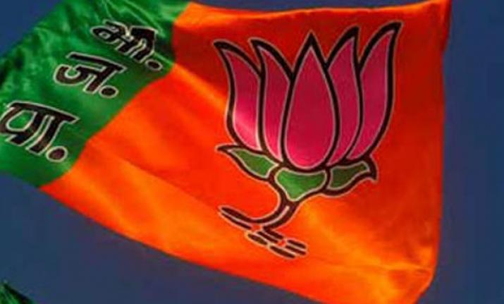 BJP leader lands in row over chat messages in Madhya Pradesh