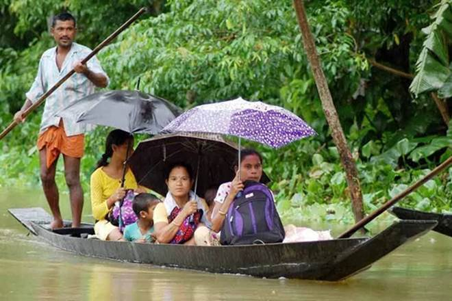 Seventy per cent of the Kaziranga National Park and its 95 camps have been submerged in water owing