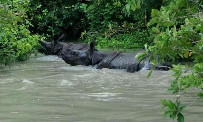 90 percent of Kaziranga National Park submerged;