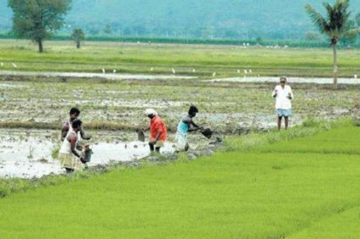 Solar scheme to assure income for farmers