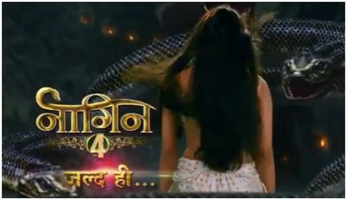 Naagin 4: Forget Hina Khan, Krystle D'Souza will play 'ichhadhari naagin' in Ekta Kapoor's show