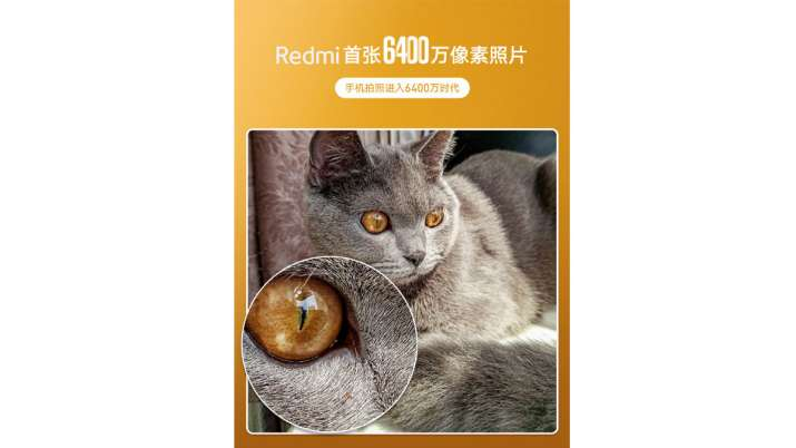 Redmi teases a camera sample of the World's First 64MP smartphone