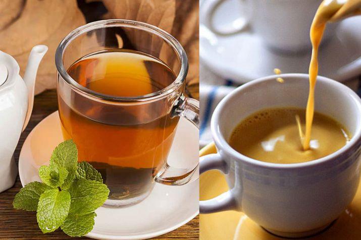 India Tv - Tea Tasting