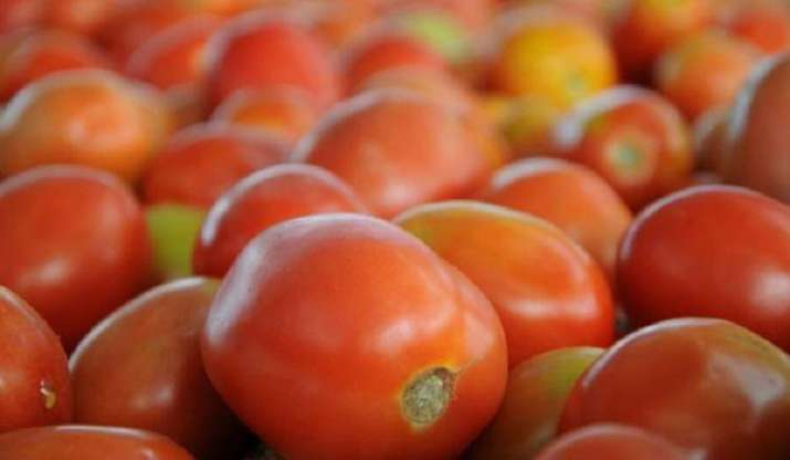 Tomato prices rise Rs 60-80 per kg in Delhi-NCR due to rains
