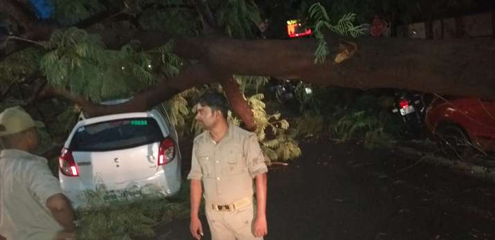 Tree falls on car in Lucknow's Gomti Nagar, woman has